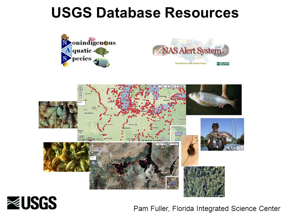 USGS Database Resources Pam Fuller, Florida Integrated Science Center
