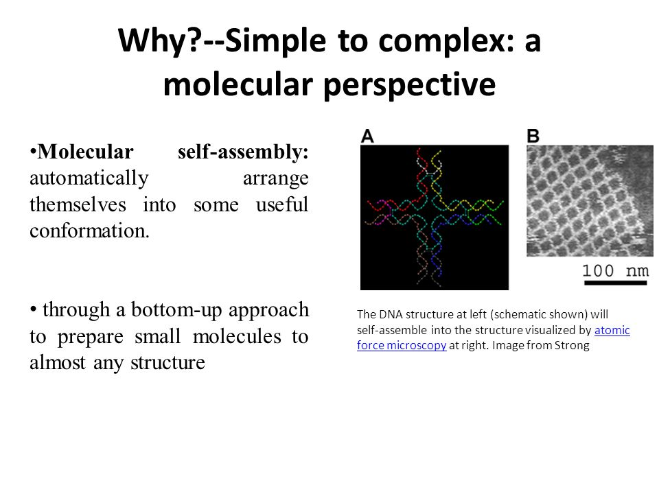 Why --Simple to complex: a molecular perspective Molecular self-assembly: automatically arrange themselves into some useful conformation.