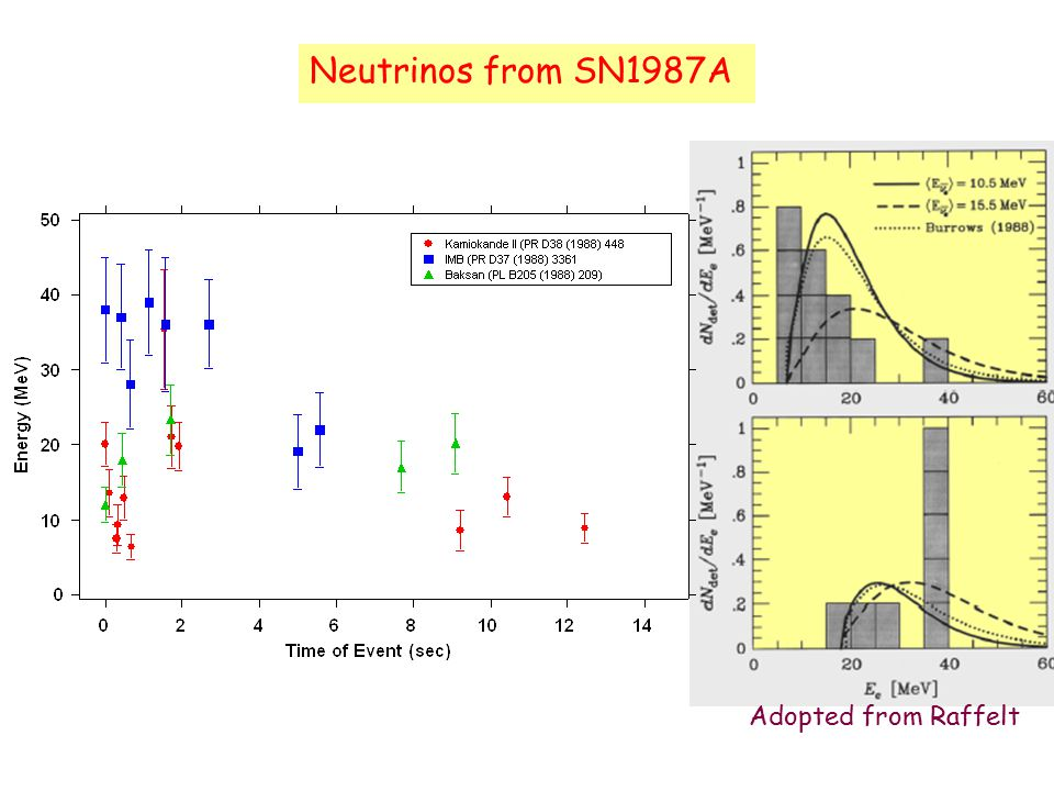 Neutrinos from SN1987A Adopted from Raffelt
