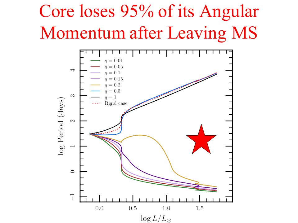 Calculations with Magnetic Dynamos Still not enough angular momentum loss from the shrinking core.