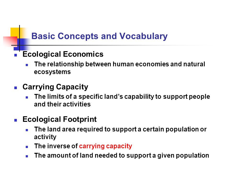 Basic Concepts and Vocabulary Ecological Economics The relationship between human economies and natural ecosystems Carrying Capacity The limits of a s