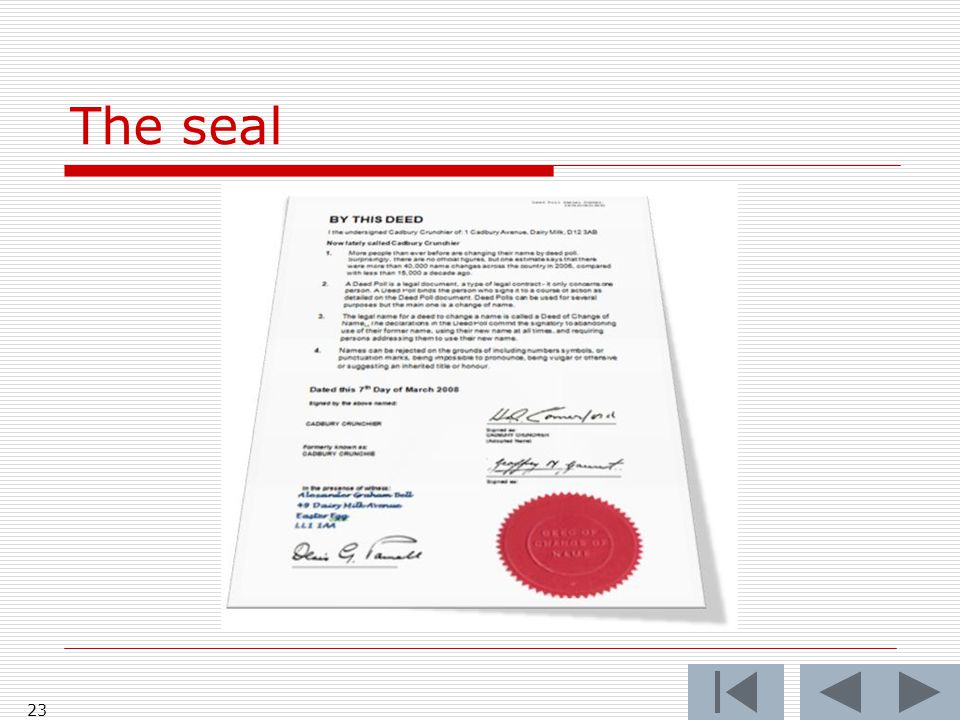 The seal 23