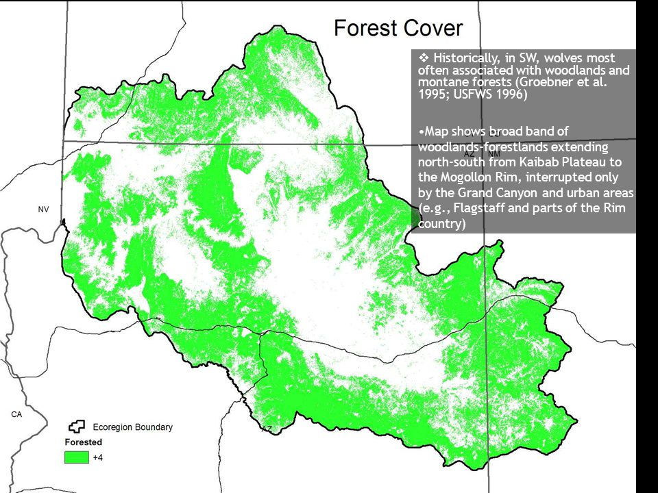  Historically, in SW, wolves most often associated with woodlands and montane forests (Groebner et al. 1995; USFWS 1996) Map shows broad band of wood