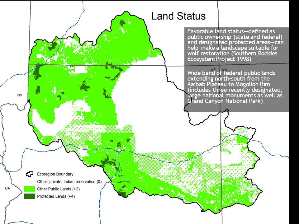Favorable land status—defined as public ownership (state and federal) and designated protected areas—can help make a landscape suitable for wolf resto