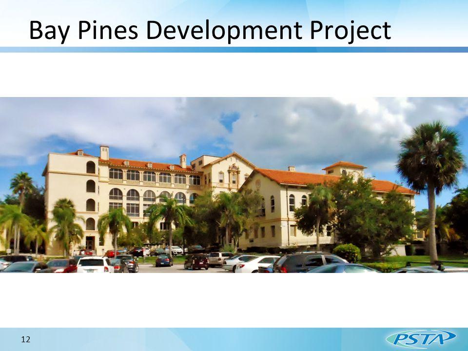 Bay Pines Development Project 12