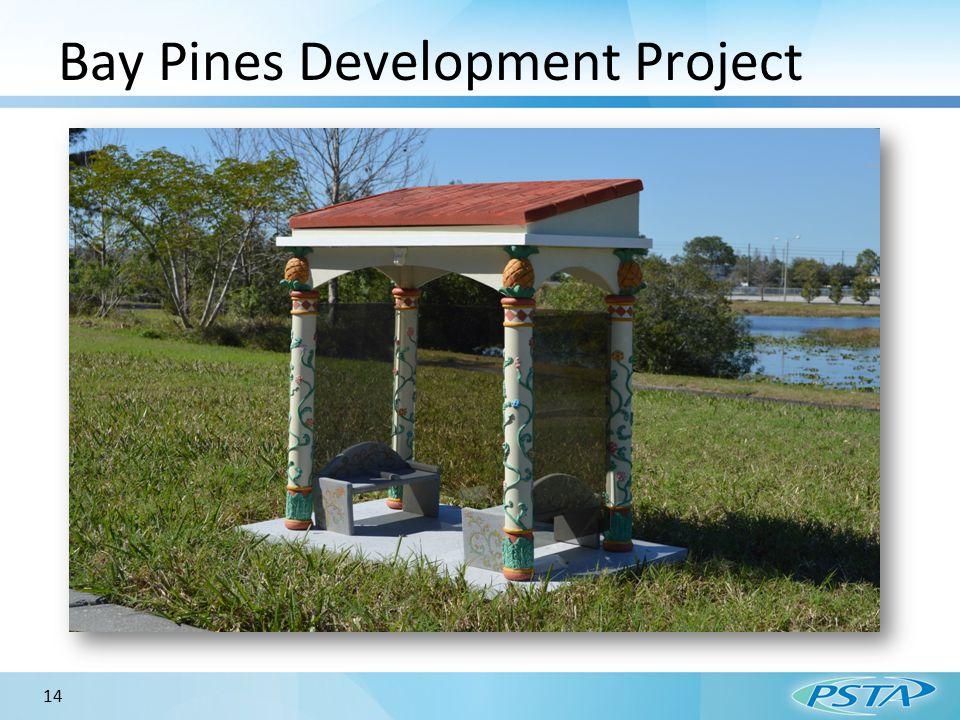 14 Bay Pines Development Project