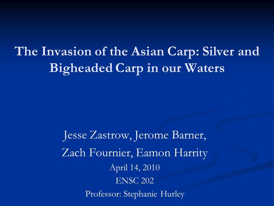 U.S.Supreme Court may rule on Asian carp case U.S.