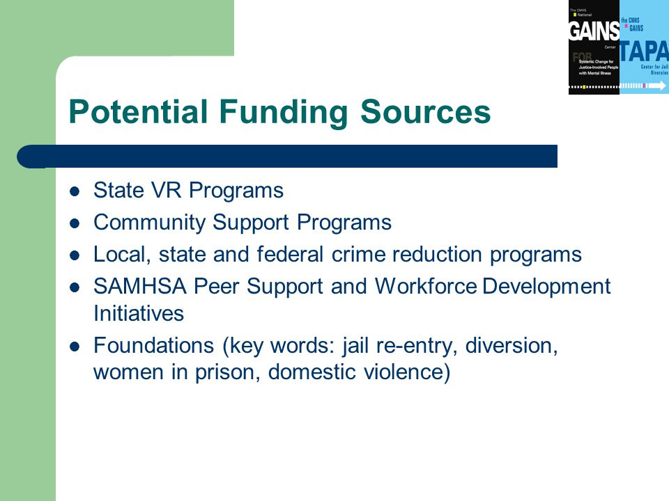 Potential Funding Sources State VR Programs Community Support Programs Local, state and federal crime reduction programs SAMHSA Peer Support and Workforce Development Initiatives Foundations (key words: jail re-entry, diversion, women in prison, domestic violence)