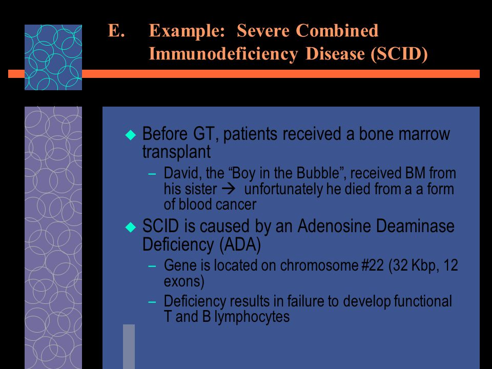 E.Example: Severe Combined Immunodeficiency Disease (SCID)  Before GT, patients received a bone marrow transplant –David, the Boy in the Bubble , received BM from his sister  unfortunately he died from a a form of blood cancer  SCID is caused by an Adenosine Deaminase Deficiency (ADA) –Gene is located on chromosome #22 (32 Kbp, 12 exons) –Deficiency results in failure to develop functional T and B lymphocytes