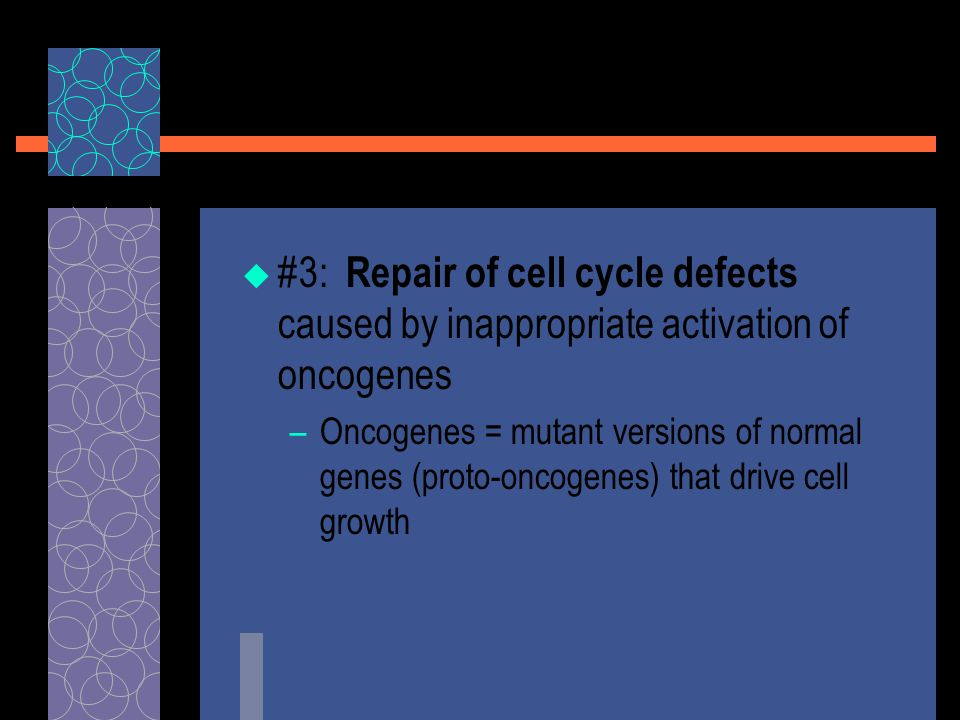  #3: Repair of cell cycle defects caused by inappropriate activation of oncogenes –Oncogenes = mutant versions of normal genes (proto-oncogenes) that drive cell growth