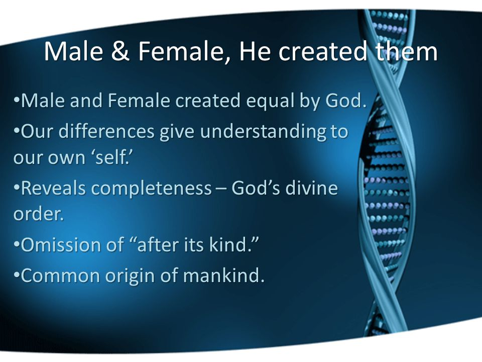 Male & Female, He created them Male and Female created equal by God.