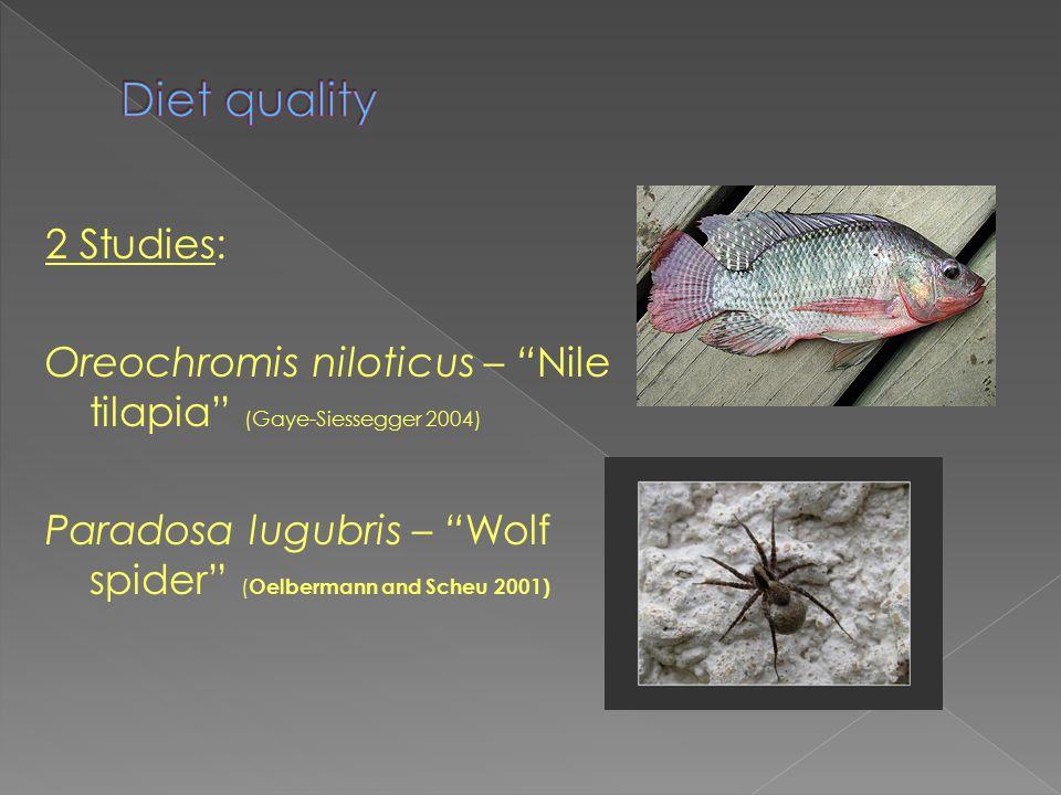2 Studies: Oreochromis niloticus – Nile tilapia (Gaye-Siessegger 2004) Paradosa lugubris – Wolf spider ( Oelbermann and Scheu 2001)
