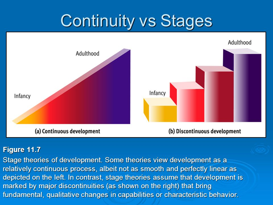 Continuity vs Stages Figure 11.7 Stage theories of development.