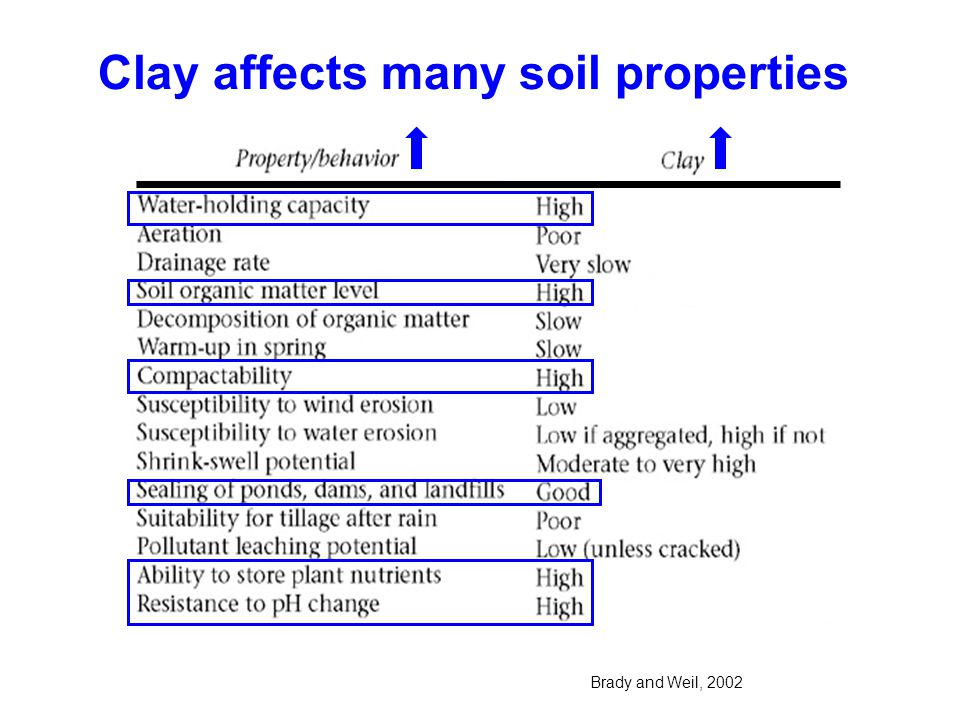 Clay affects many soil properties Brady and Weil, 2002