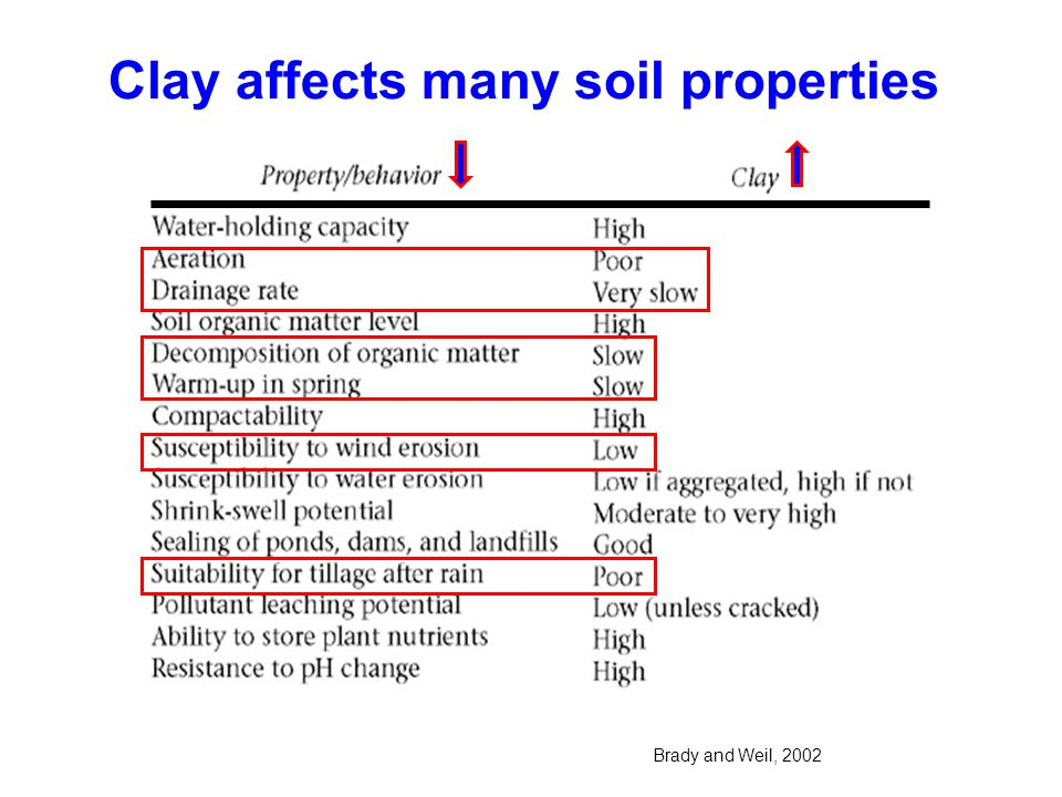 Clay particles are made of very insoluble materials !