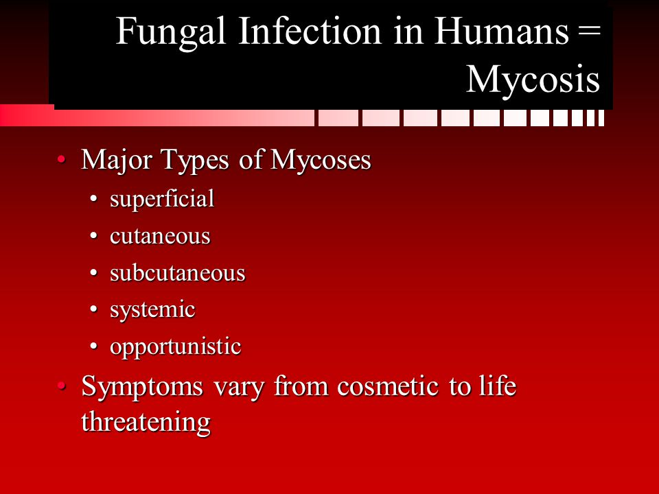 Fungal Infection in Humans = Mycosis Major Types of MycosesMajor Types of Mycoses superficialsuperficial cutaneouscutaneous subcutaneoussubcutaneous systemicsystemic opportunisticopportunistic Symptoms vary from cosmetic to life threateningSymptoms vary from cosmetic to life threatening