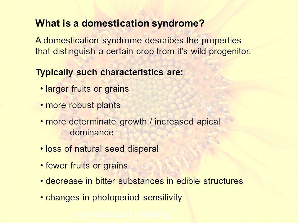 Domestication of Maize