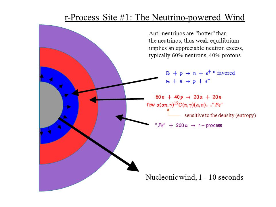 Nucleonic wind, 1 - 10 seconds Anti-neutrinos are hotter than the neutrinos, thus weak equilibrium implies an appreciable neutron excess, typically 60% neutrons, 40% protons * favored r-Process Site #1: The Neutrino-powered Wind sensitive to the density (entropy)