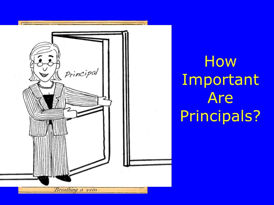 How Important Are Principals
