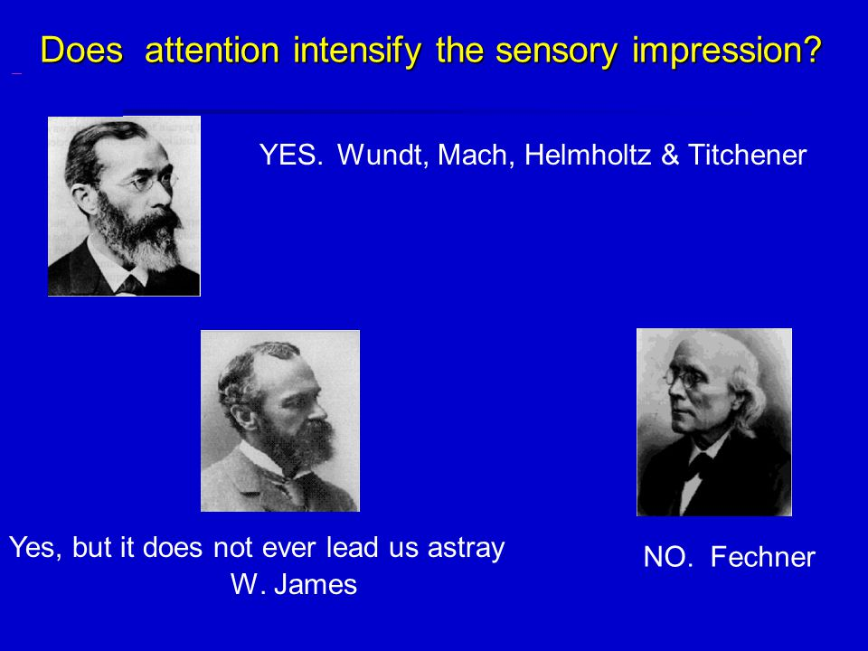YES. Wundt, Mach, Helmholtz & Titchener W. James Does attention intensify the sensory impression.