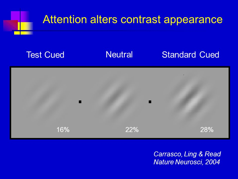 Attention alters contrast appearance Test Cued Neutral Standard Cued 16%22%28% Carrasco, Ling & Read Nature Neurosci, 2004
