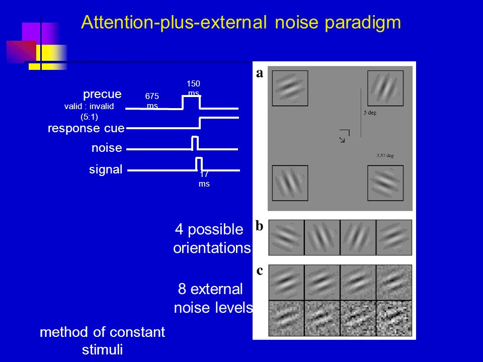Attention-plus-external noise paradigm 8 external noise levels 4 possible orientations precue valid : invalid (5:1) signal noise response cue 150 ms 675 ms 17 ms method of constant stimuli