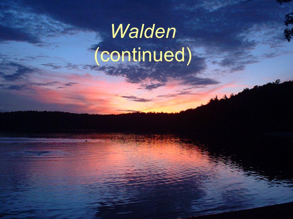 Walden (continued)