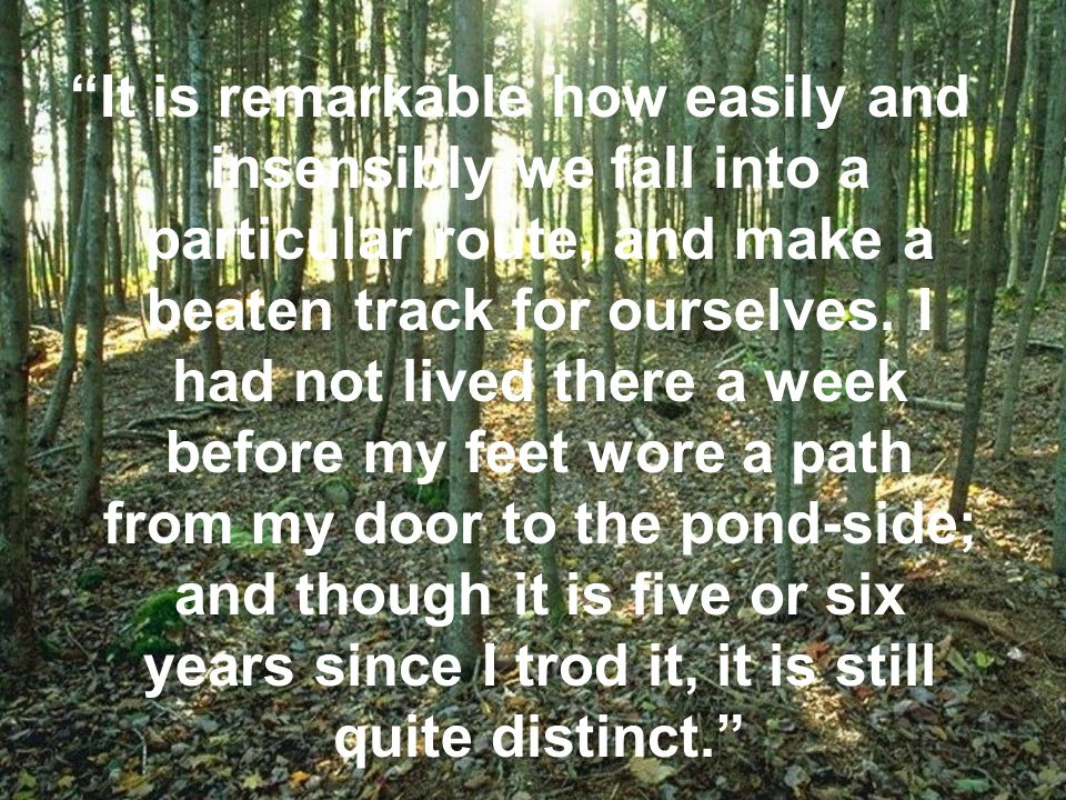 It is remarkable how easily and insensibly we fall into a particular route, and make a beaten track for ourselves.