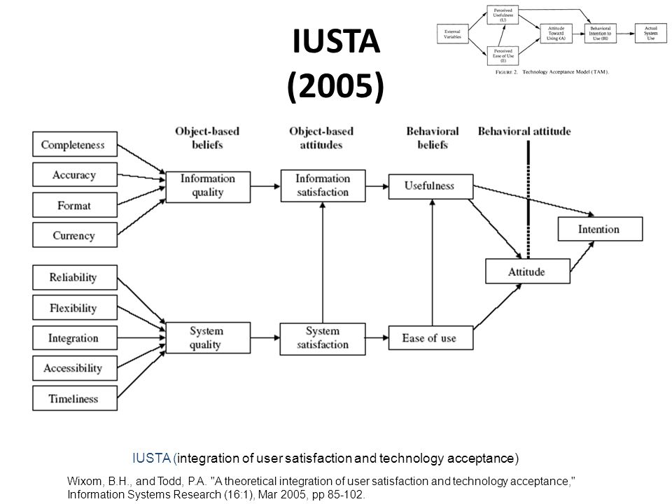 IUSTA (2005) Wixom, B.H., and Todd, P.A.