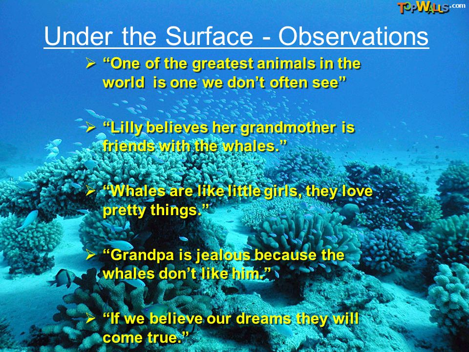"On the Surface - Observations  ""The Grandmother told Lilly exciting Stories.""  ""The Grandmother was nice to the whales.""  ""The Grandfather thought"