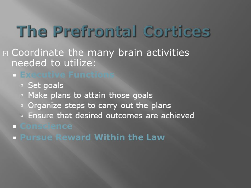  Coordinate the many brain activities needed to utilize:  Executive Functions  Set goals  Make plans to attain those goals  Organize steps to carry out the plans  Ensure that desired outcomes are achieved  Conscience  Pursue Reward Within the Law