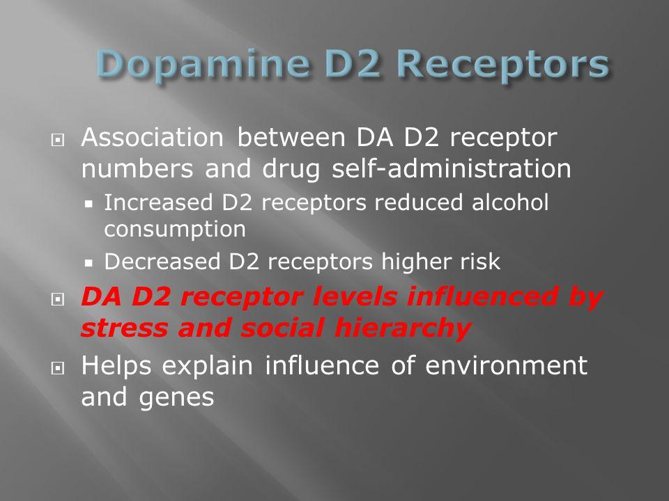  Association between DA D2 receptor numbers and drug self-administration  Increased D2 receptors reduced alcohol consumption  Decreased D2 receptor