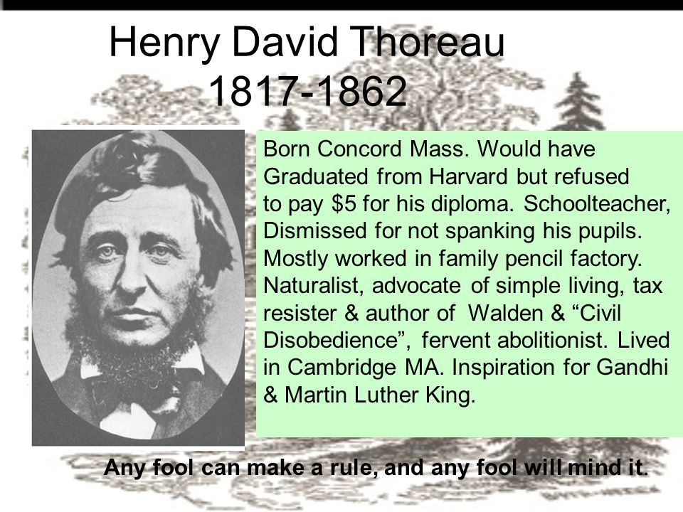 Henry David Thoreau 1817-1862 Any fool can make a rule, and any fool will mind it.