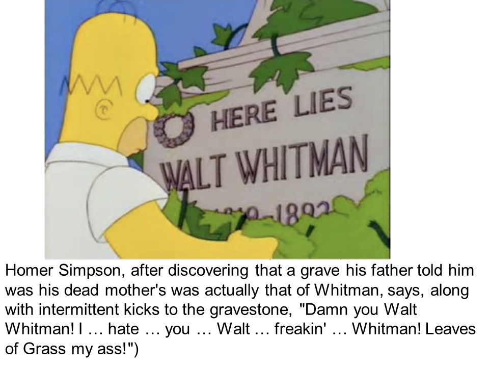 Homer Simpson, after discovering that a grave his father told him was his dead mother s was actually that of Whitman, says, along with intermittent kicks to the gravestone, Damn you Walt Whitman.