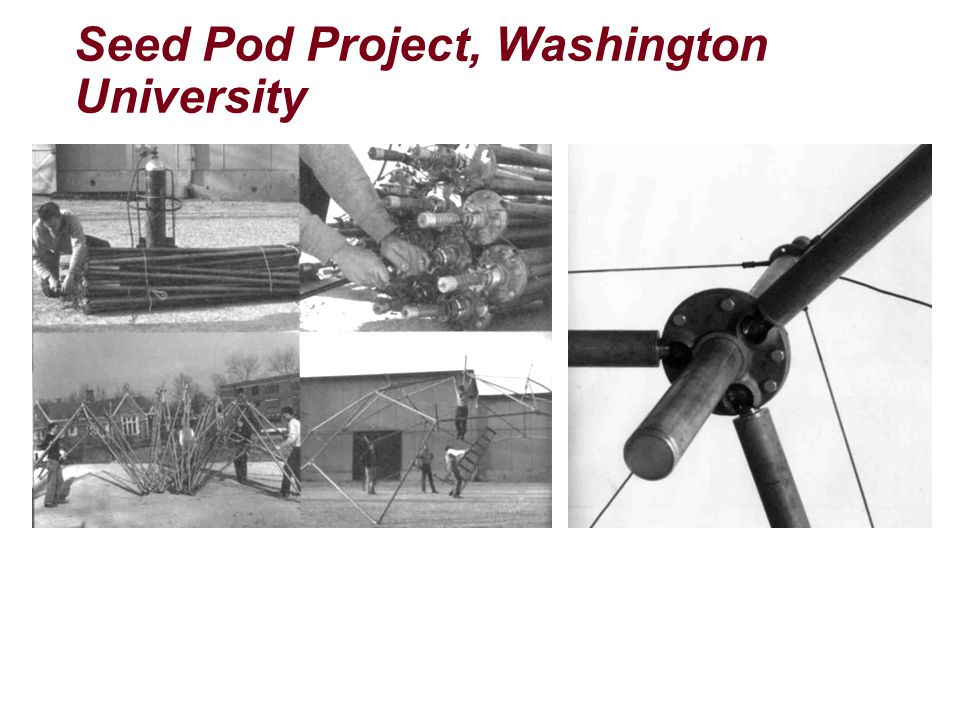 Seed Pod Project, Washington University