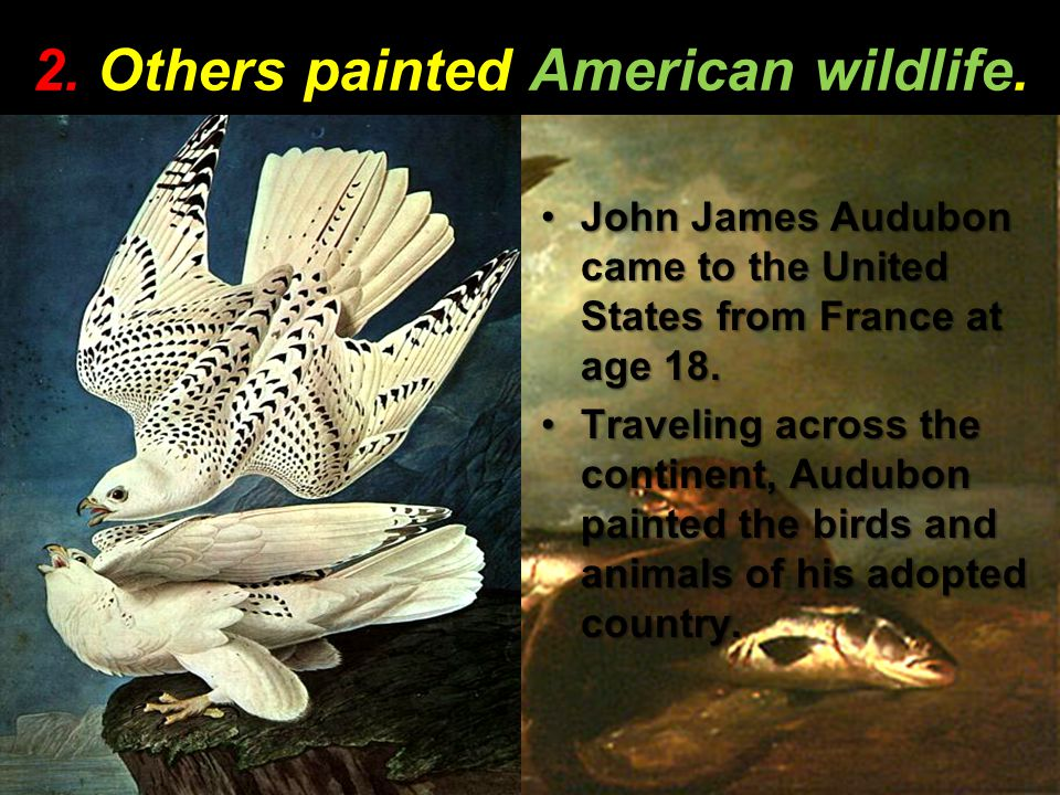 2. Others painted American wildlife. John James Audubon came to the United States from France at age 18.John James Audubon came to the United States f