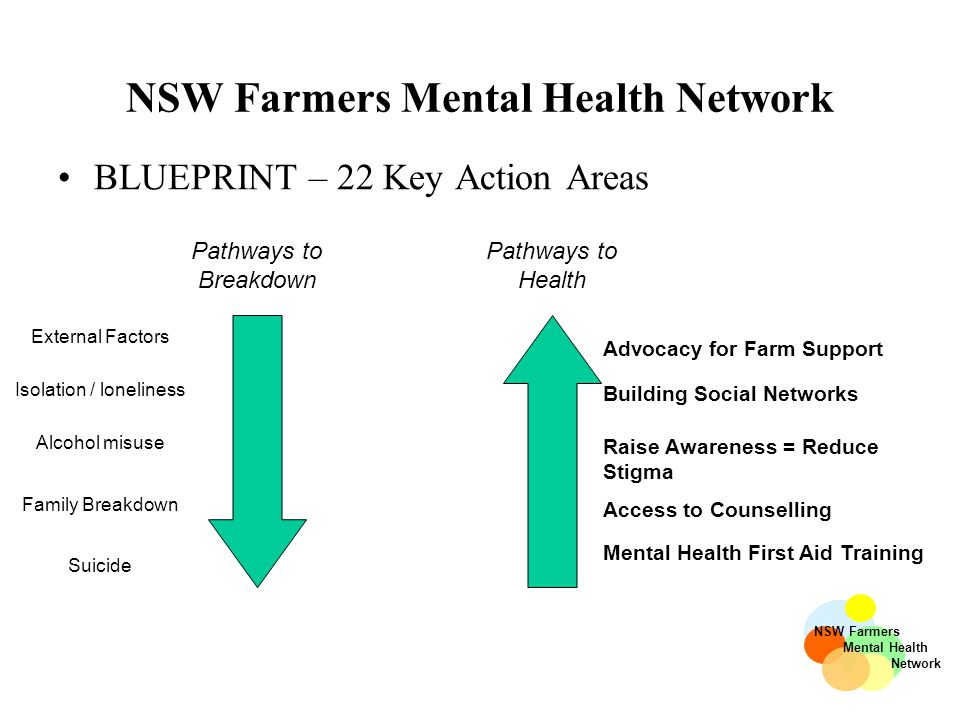 NSW Farmers Mental Health Network BLUEPRINT – 22 Key Action Areas Pathways to Health Pathways to Breakdown Mental Health First Aid Training NSW Farmers Mental Health Network External Factors Isolation / loneliness Alcohol misuse Family Breakdown Suicide Access to Counselling Building Social Networks Raise Awareness = Reduce Stigma Advocacy for Farm Support