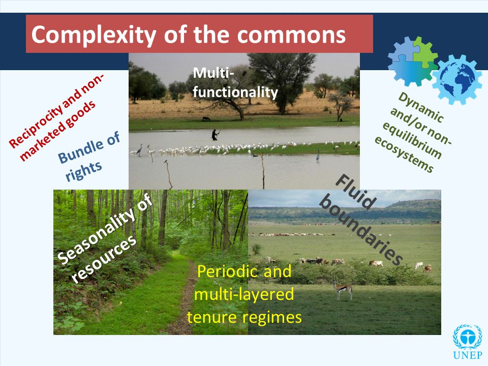 Complexity of the commons Multi- functionality Dynamic and/or non- equilibrium ecosystems Fluid boundaries Seasonality of resources Periodic and multi-layered tenure regimes Reciprocity and non- marketed goods Bundle of rights