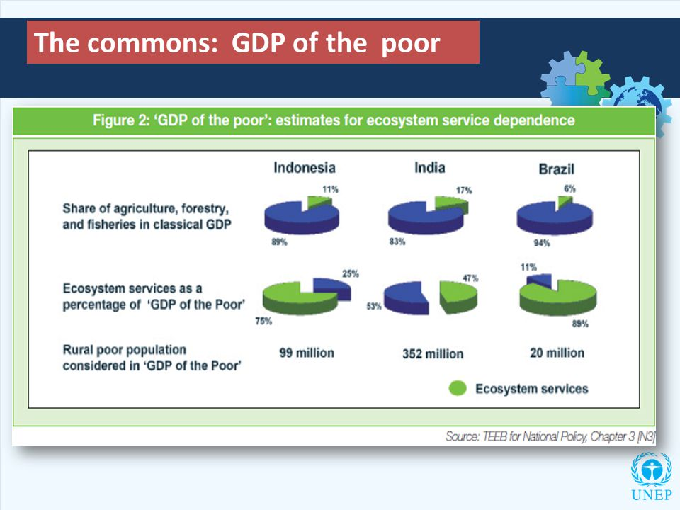 The commons: GDP of the poor