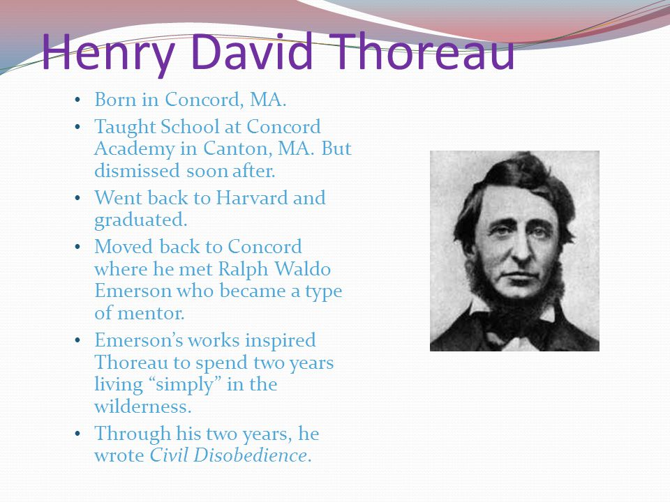Henry David Thoreau Born in Concord, MA. Taught School at Concord Academy in Canton, MA. But dismissed soon after. Went back to Harvard and graduated.