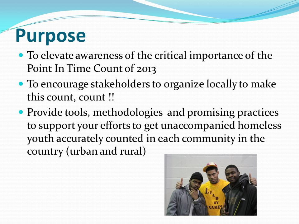 Purpose To elevate awareness of the critical importance of the Point In Time Count of 2013 To encourage stakeholders to organize locally to make this count, count !.