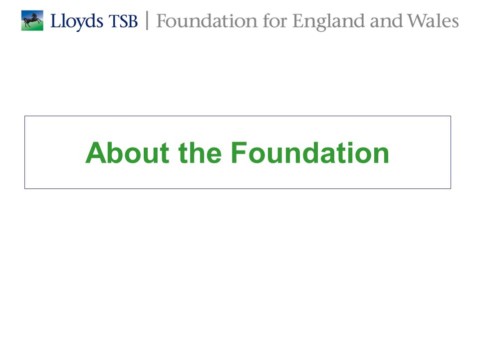 About the Foundation