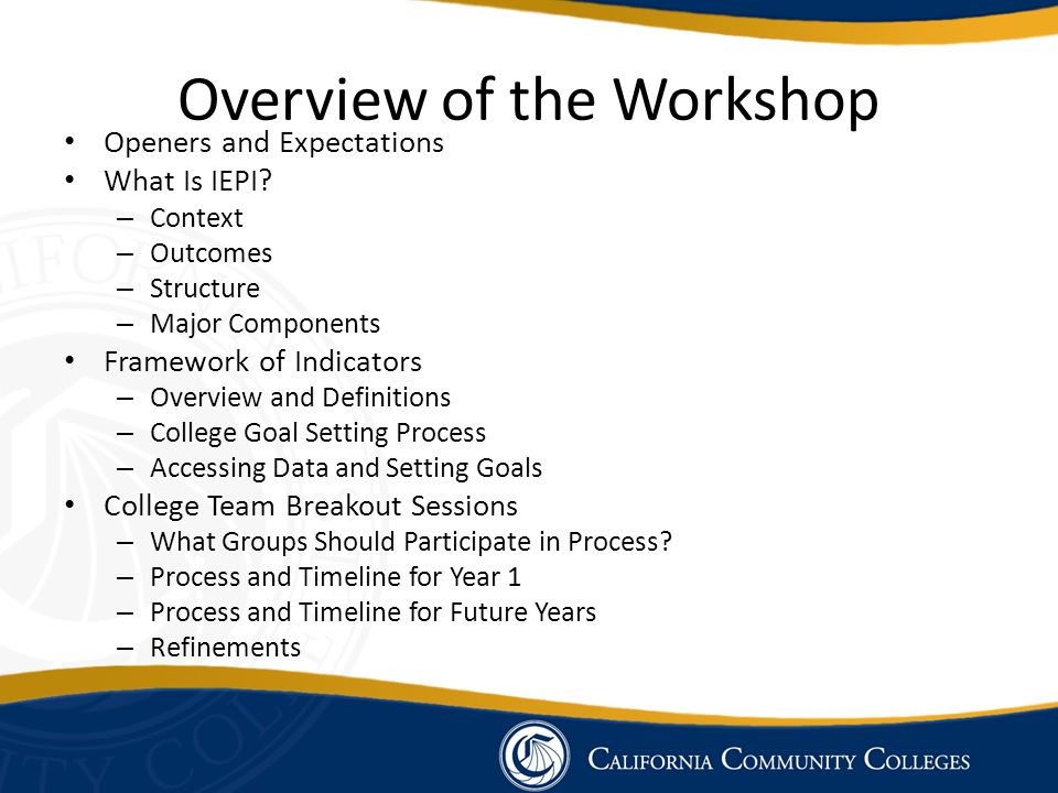 Overview of the Workshop Openers and Expectations What Is IEPI.