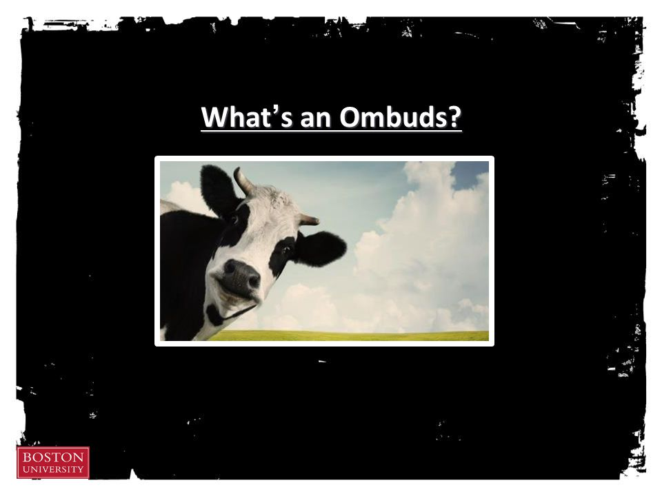 What's an Ombuds?