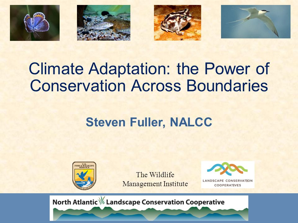 Climate Adaptation: the Power of Conservation Across Boundaries Steven Fuller, NALCC The Wildlife Management Institute