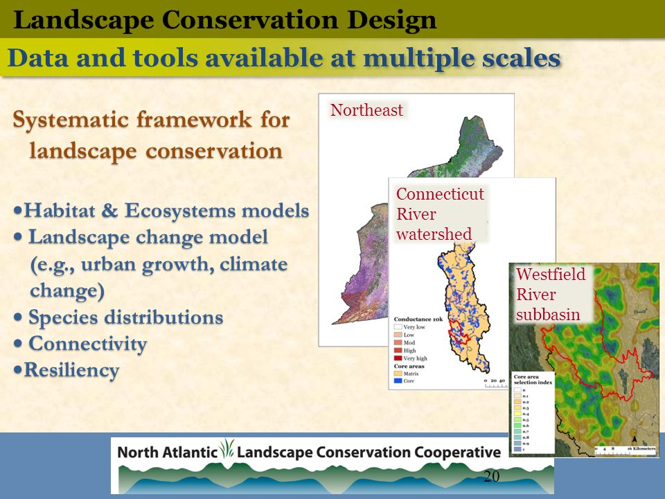 Northeast Connecticut River watershed Westfield River subbasin Systematic framework for landscape conservation Habitat & Ecosystems models Landscape change model (e.g., urban growth, climate change) Species distributions Connectivity Resiliency Systematic framework for landscape conservation Habitat & Ecosystems models Landscape change model (e.g., urban growth, climate change) Species distributions Connectivity Resiliency Landscape Conservation Design Data and tools available at multiple scales 20