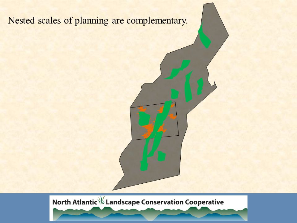Nested scales of planning are complementary.