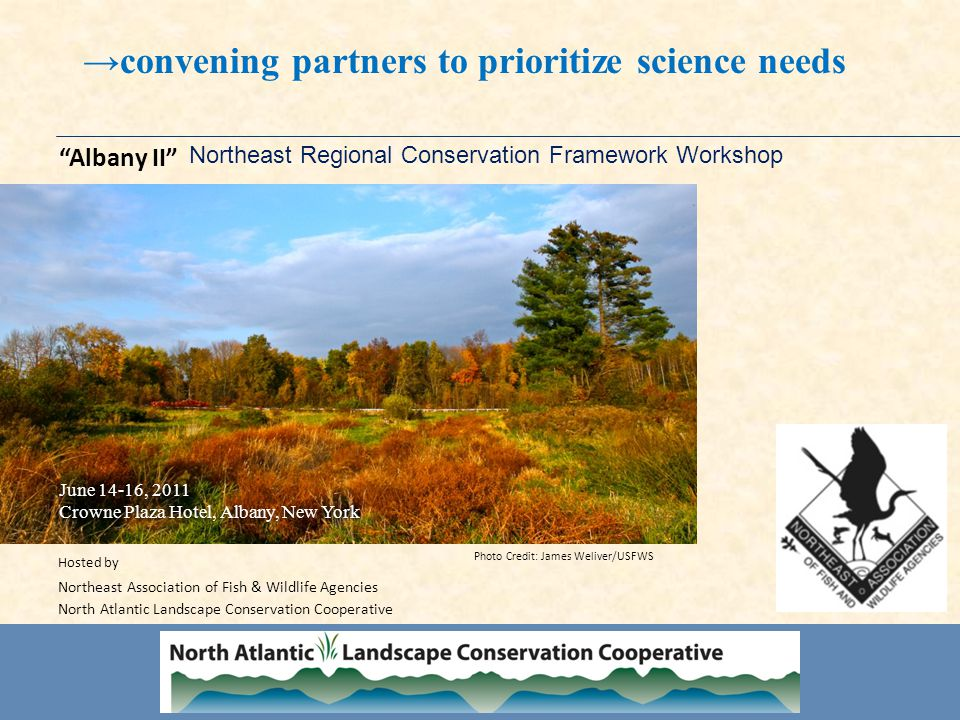 Northeast Regional Conservation Framework Workshop Albany II June 14-16, 2011 Crowne Plaza Hotel, Albany, New York June 14-16, 2011 Crowne Plaza Hotel, Albany, New York Hosted by Northeast Association of Fish & Wildlife Agencies North Atlantic Landscape Conservation Cooperative Photo Credit: James Weliver/USFWS →convening partners to prioritize science needs