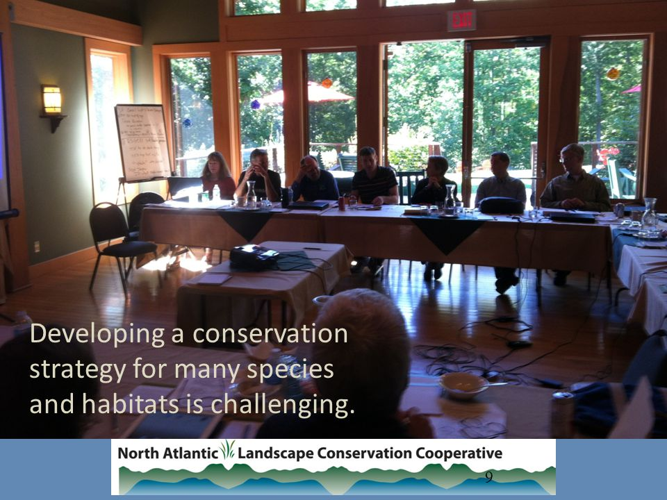 9 Developing a conservation strategy for many species and habitats is challenging.