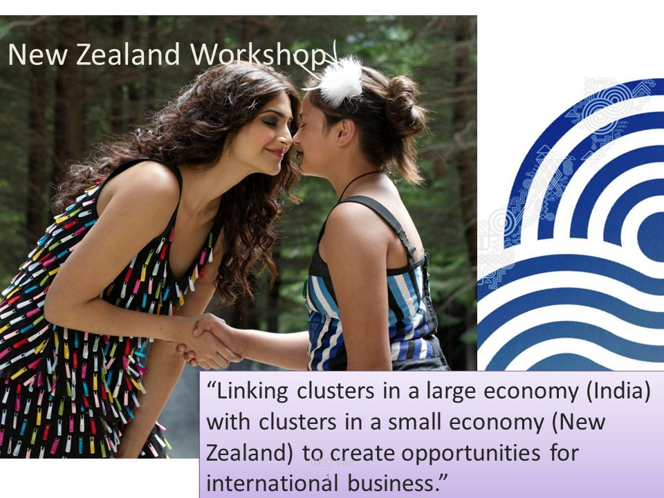 New Zealand Workshop Linking clusters in a large economy (India) with clusters in a small economy (New Zealand) to create opportunities for international business. 1 CEO Visit